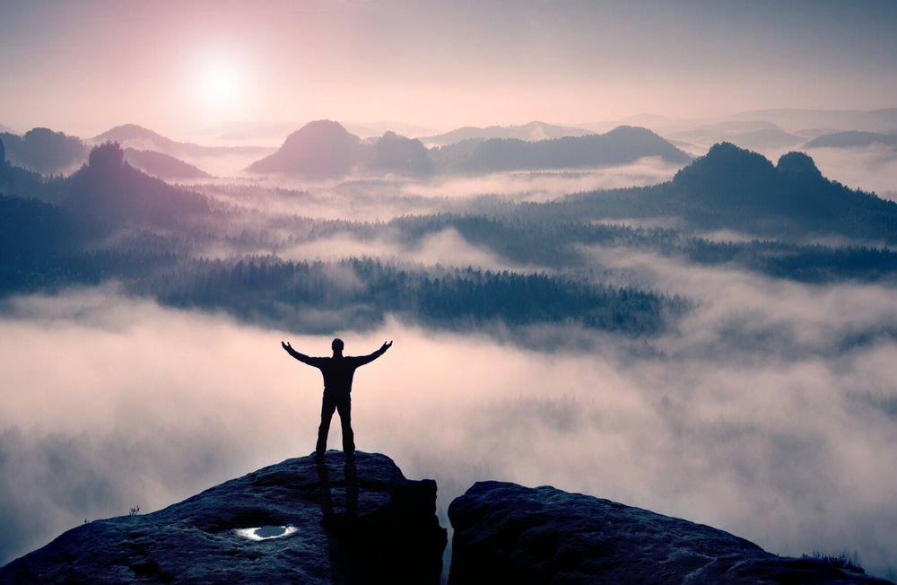 The Four Pillars of Stress Management - Part 1: The Role of Movement in Reducing Chronic Stress